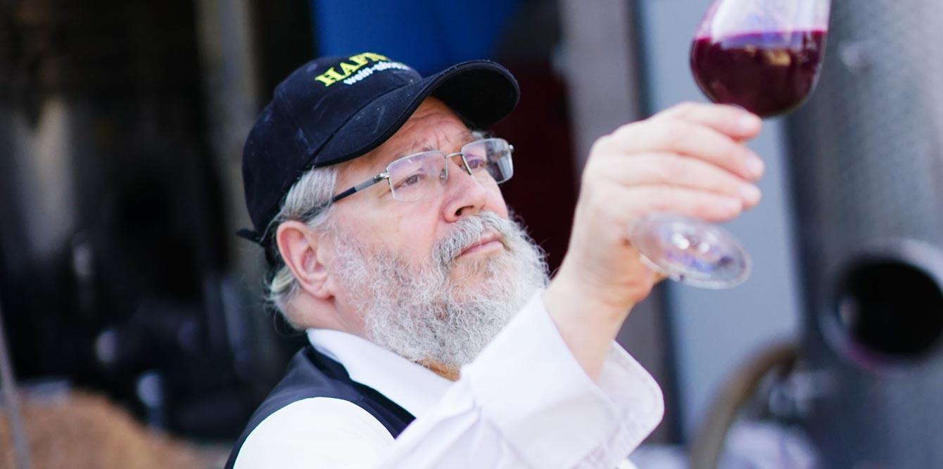 Koscher Wein - Hafner